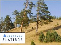 https://apartmanzlatibor.com/ website
